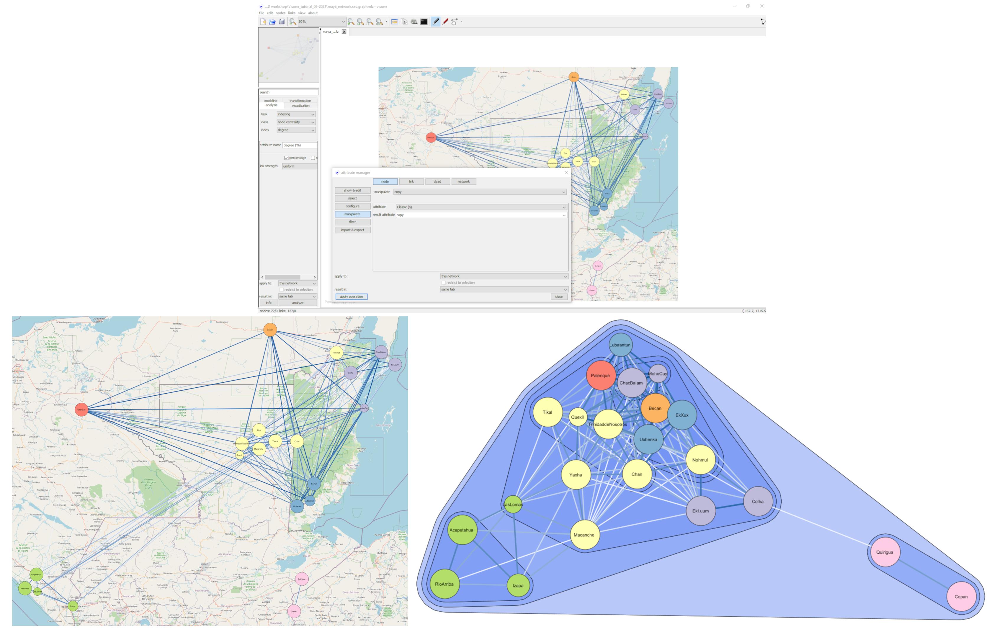 Networks in Visone